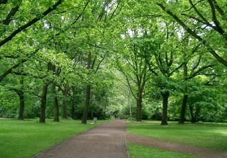 Tiergarten Parc
