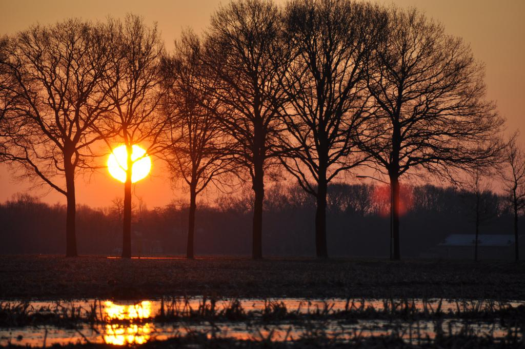 Beautiful sunrise from The Netherlands