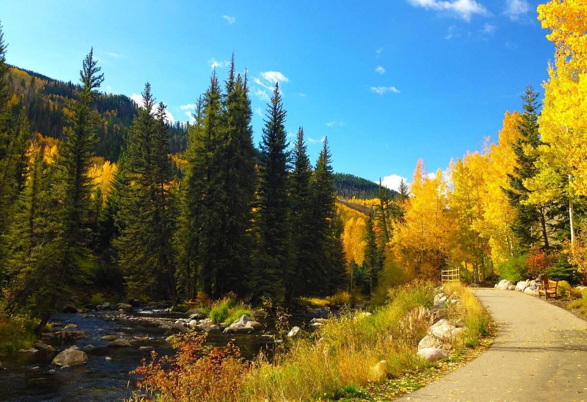 Colorado Fall Foliage: Wonderful Autumn View