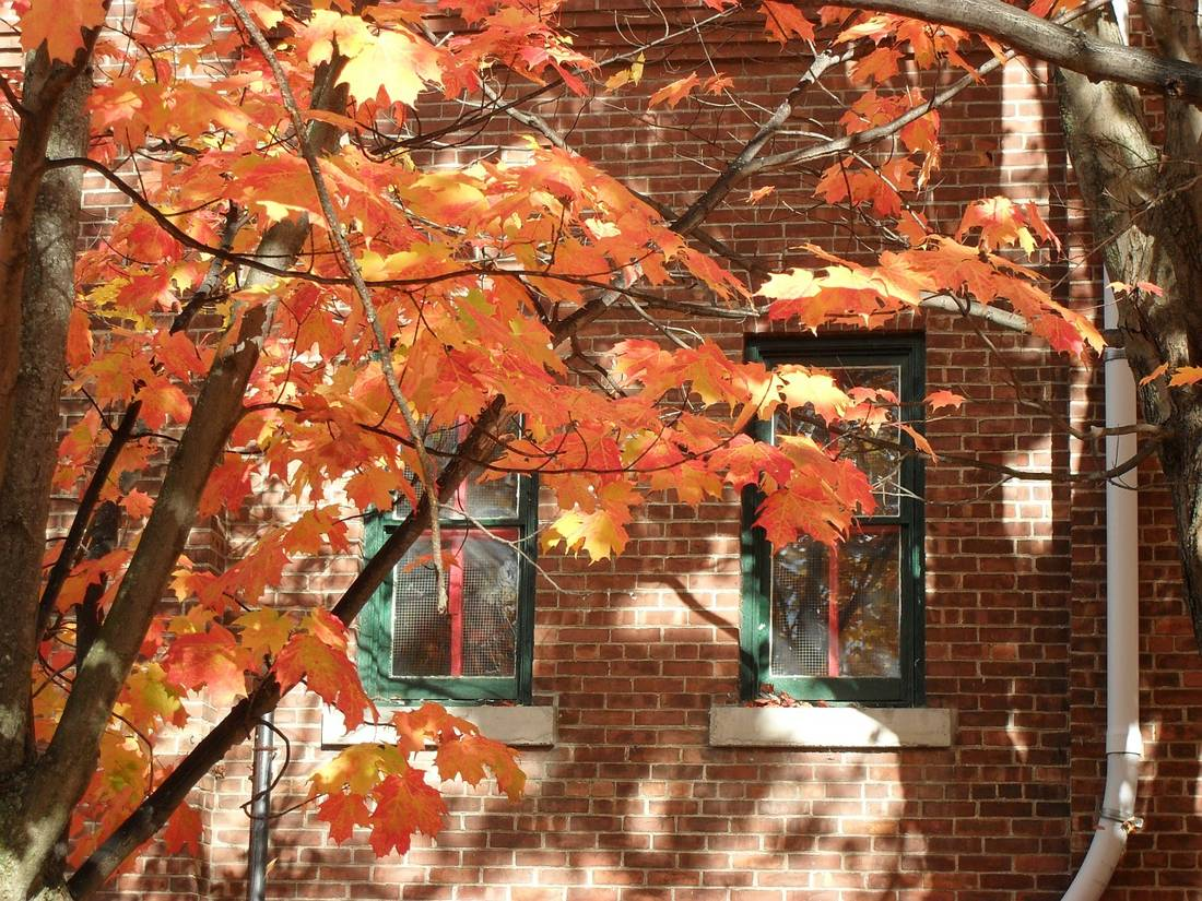 Fall Foliage Vacation in New England
