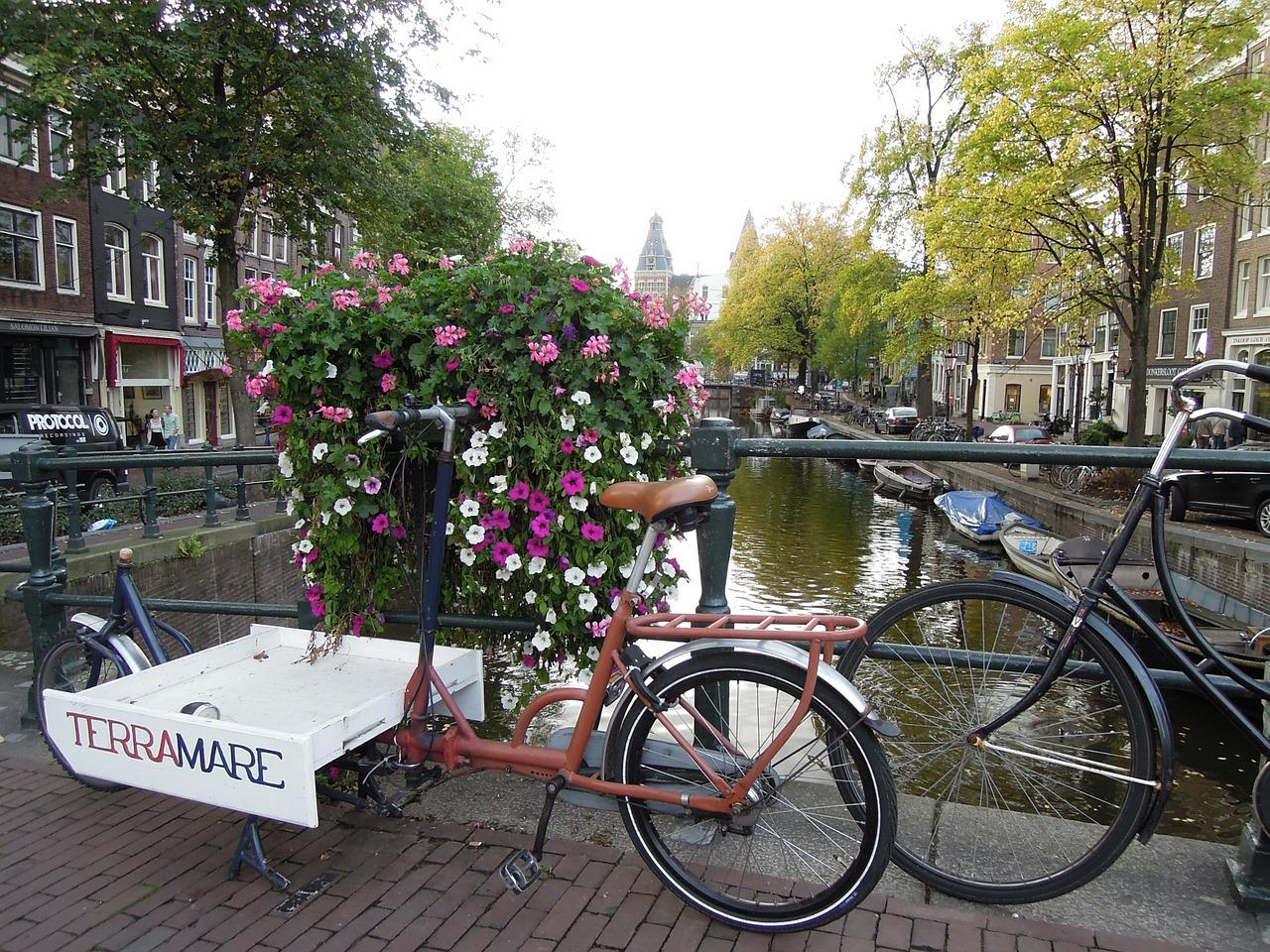 Amsterdam is the largest city and capital of the Netherlands.