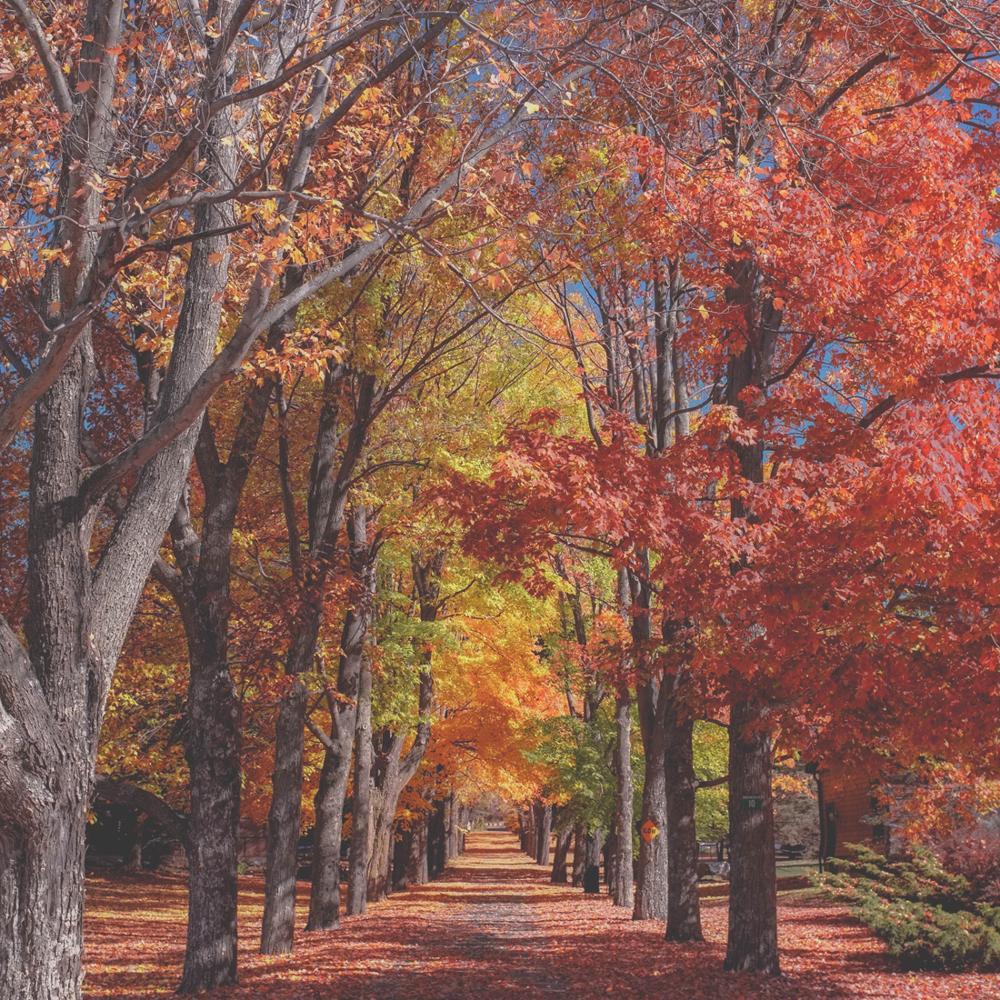 Catskill Mountains, United States