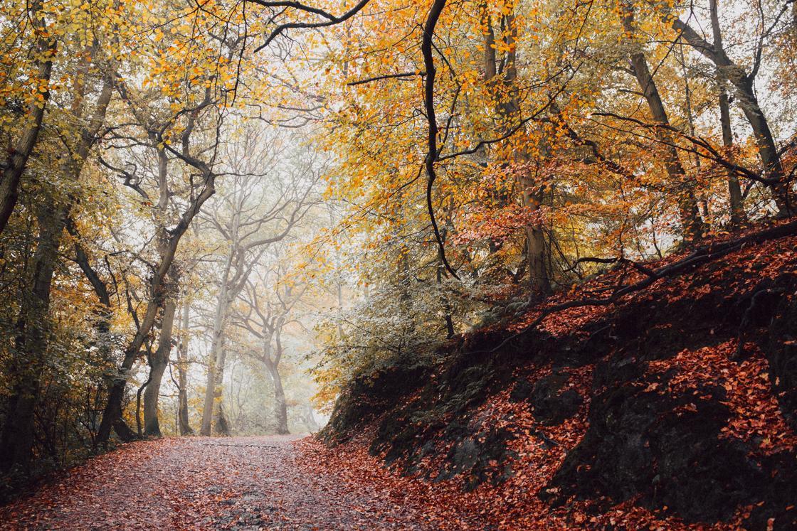 The Wrekin, Telford, United-Kingdom
