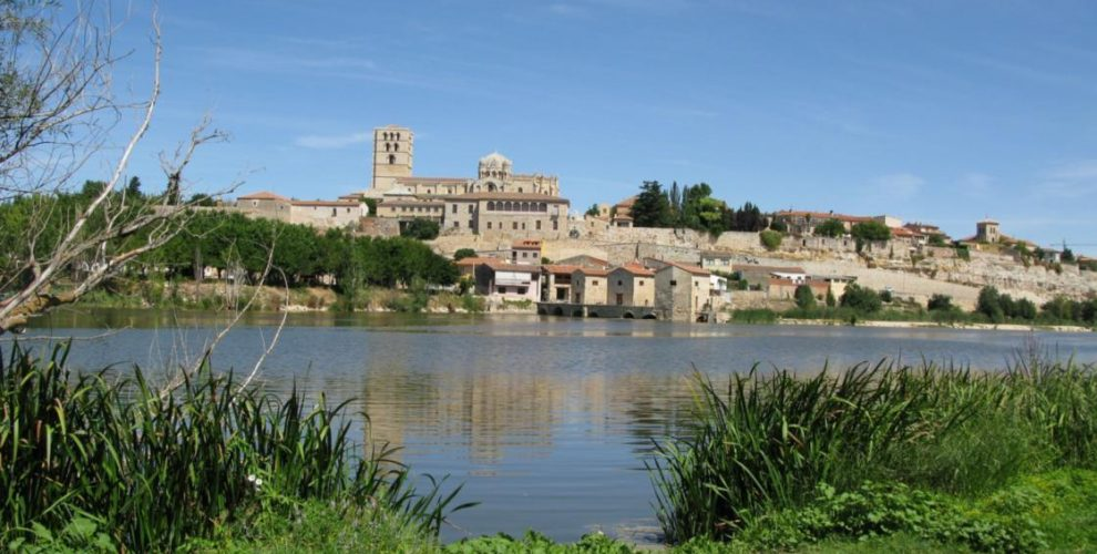 Zamora, Beautiful Small Town To Visit in Spain